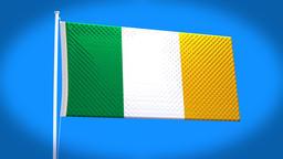 the national flag of Ireland CG動画