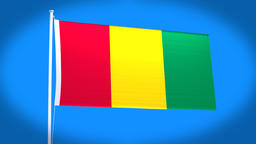 the national flag of Guinea Animation