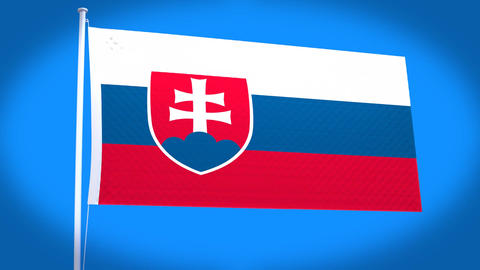 the national flag of Slovakia Stock Video Footage