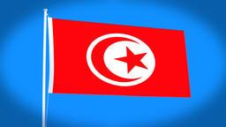 the national flag of Tunisia CG動画