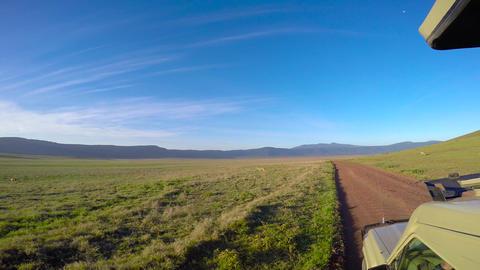 Eland in the crater Ngorongoro. Safari - journey through the African Savannah. T Filmmaterial