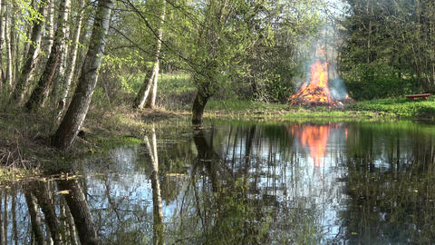 Bonfire campfire on lake coast in spring time near forest Filmmaterial