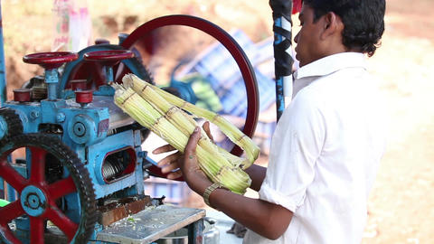 Make Reed Juice with Special Machine Closeup Footage