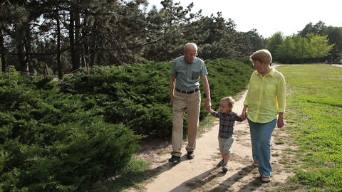 Toddler boy walking with his grandparents in park Footage