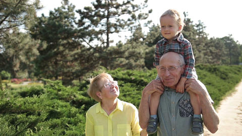 Cute boy sitting on grandfather's shoulder outdoor Footage