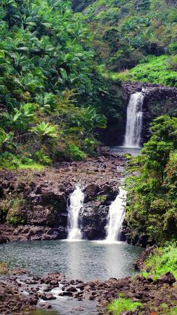 Umauma Falls Hawaii Footage