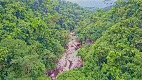 Aerial View of Tropical Forest and Curving Narrow River Footage