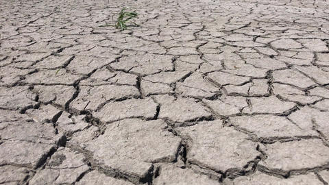 Cracked by drought the ground Footage