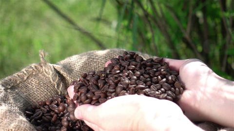 Video of grabbing coffee beans in real slow motion Filmmaterial