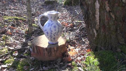 Birch tree sap dripping in decorative jug through peg Footage