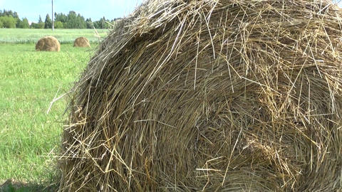 Industrial haystacks in the field Footage