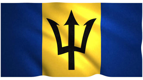 Flag of Barbados waving on white background Animation
