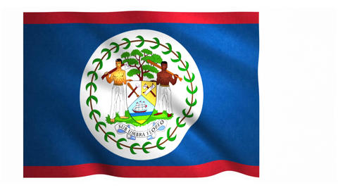 Flag of Belize waving on white background Animation