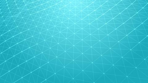 Light Network Animación
