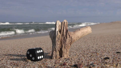 Lucky black dice and piece of wood by the sea Footage