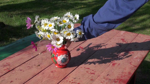 Gardener placing vase with daisies on red table Footage