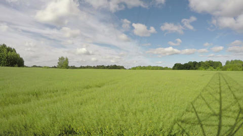 spring clouds motion in farmland rapeseed field. Time lapse 4K Footage