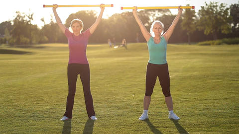 Sporty ladies doing fitness exercise with fitbar Footage