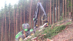 Harvester in a forest 画像