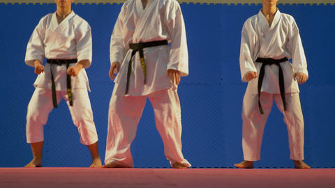 Team of three martial arts practitioners performing bowing saluting ritual at th Footage