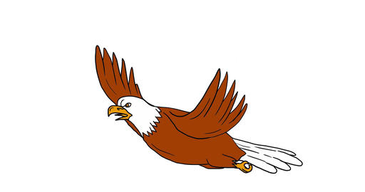 Bald Eagle Flying 2D Animation CG動画素材