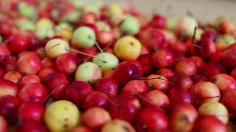 apples revolve Stock Video Footage