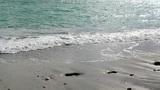 Black sea Footage
