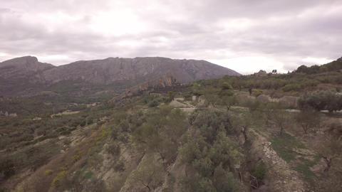 Aerial flying backwards over olive trees - Marina Baixa, Costa Blanca, Alicante, Footage