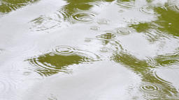 Rain drops are falling on water level and create many drops circles. Small waves Footage