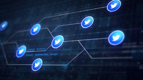 Twitter Icon Line Connection of Circuit Board Loop Animation 4K. Editorial Anima Animation