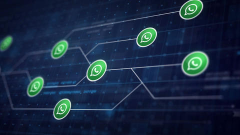 Whatsapp Icon Line Connection of Circuit Board Loop... Stock Video Footage