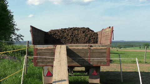 Horse manure in wagon on a horse farm Footage