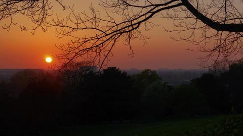 Beautiful sunset in Richmond, London, England, UK Footage