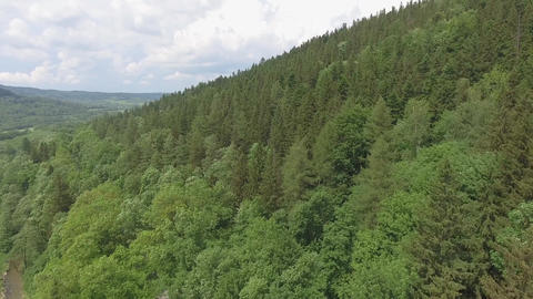 Aerial view of the summertime in mountains.Poland. Pine tree forest and clouds o Archivo