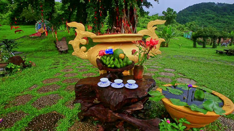 Flowers Tea Cups on Large Brown Stump on Green Meadow Footage