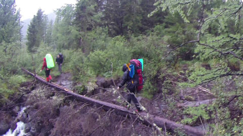 Hikers Cross Mountain River Over Log Footage