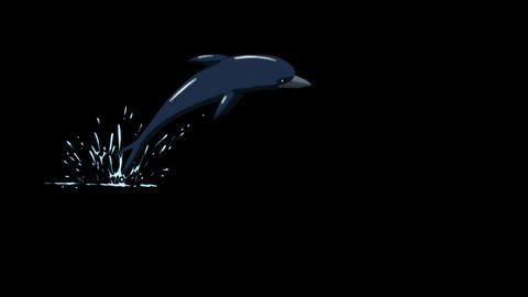 Dolphin Jump Out of the Water. Front View Animation
