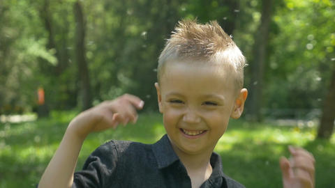 Happy child enjoys dandelion flying with green trees and sunlight in a park Footage