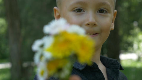 Closeup of little child holding and giving a bouquet of flowers and offering the Footage