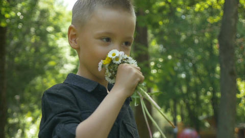 Young child smelling summer flowers and feeling nose tickling in recreational wo Footage