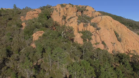 of the pine forest of the Esterel mountains, filmed by drone, France Live Action