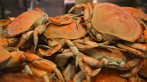 Appetizing freshly prepared crabs close-up ビデオ