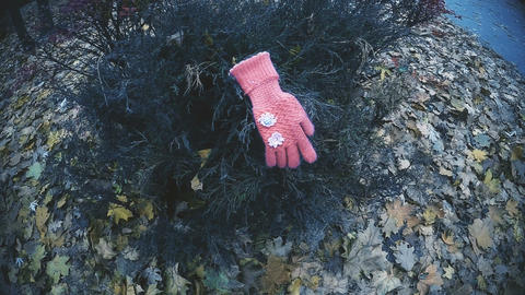 Kids glove found on bush in park, evidence confirming kidnapping of little girl ビデオ