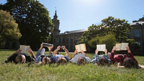 Group of busy students studying together in park Footage