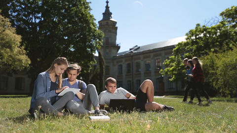 Positive college students studying on campus lawn Live Action