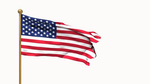 American Flag 01 CG動画素材