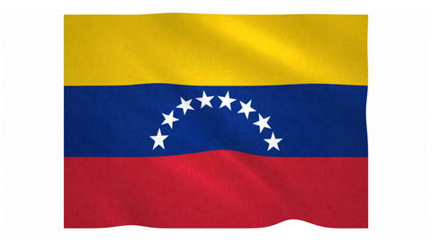 Flag of Venezuela waving on white background Animation