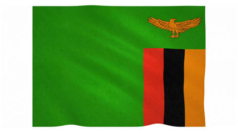 Flag of Zambia waving on white background Animation