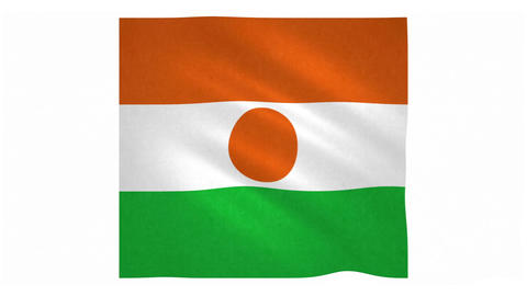 Flag of Niger waving on white background Animation