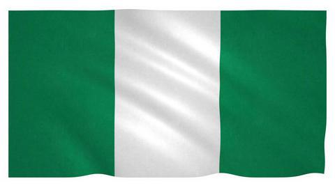Flag of Nigeria waving on white background Animation